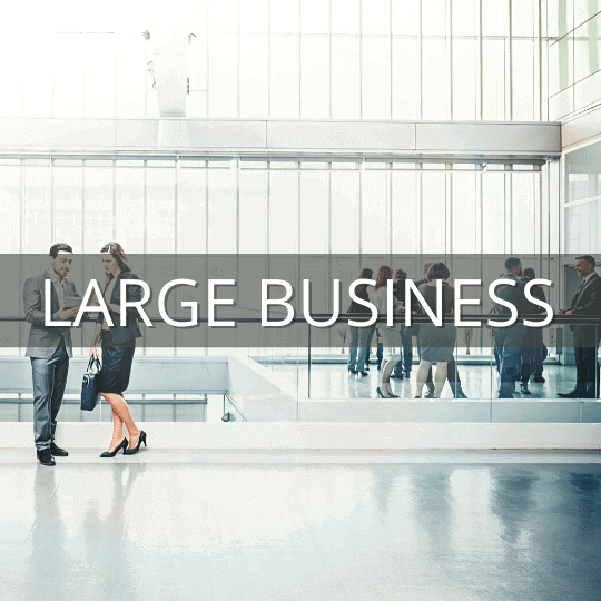 large business industry IT solutions
