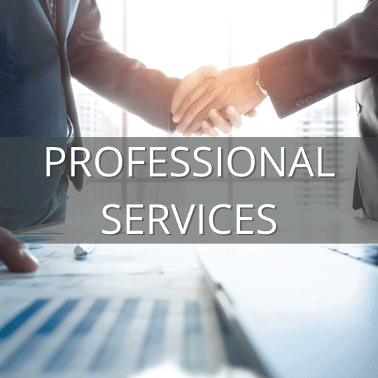 professional services industry IT solutions
